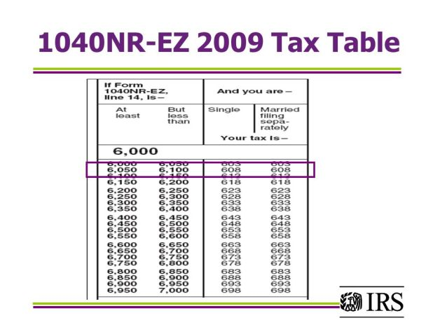 2009 federal tax form 1040ez instructions