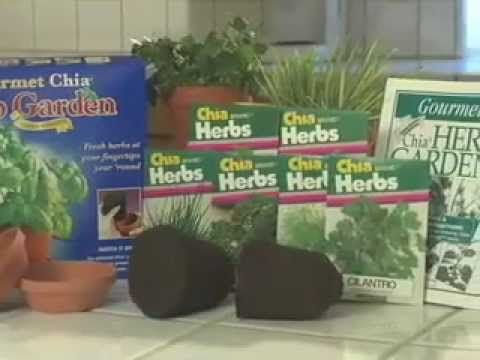 chia pet seed instructions