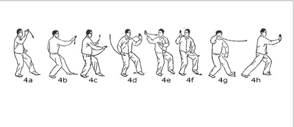 yang tai chi instruction