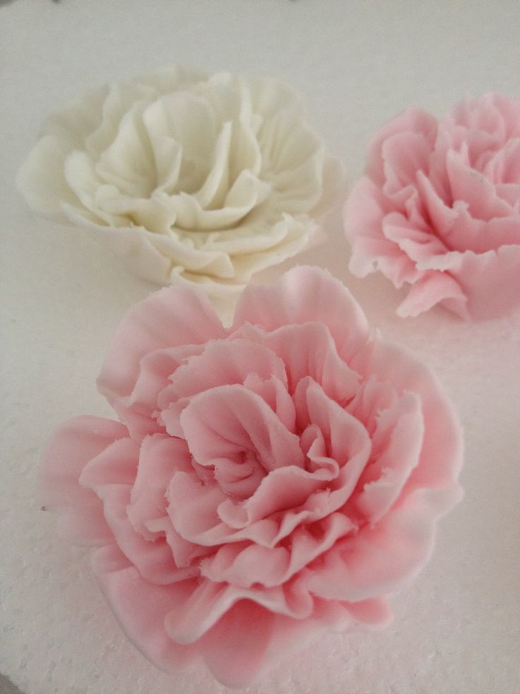 sugar paste roses instructions