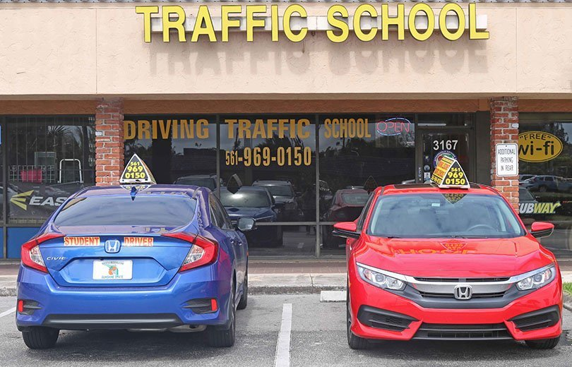 driving instruction lessons newcastle