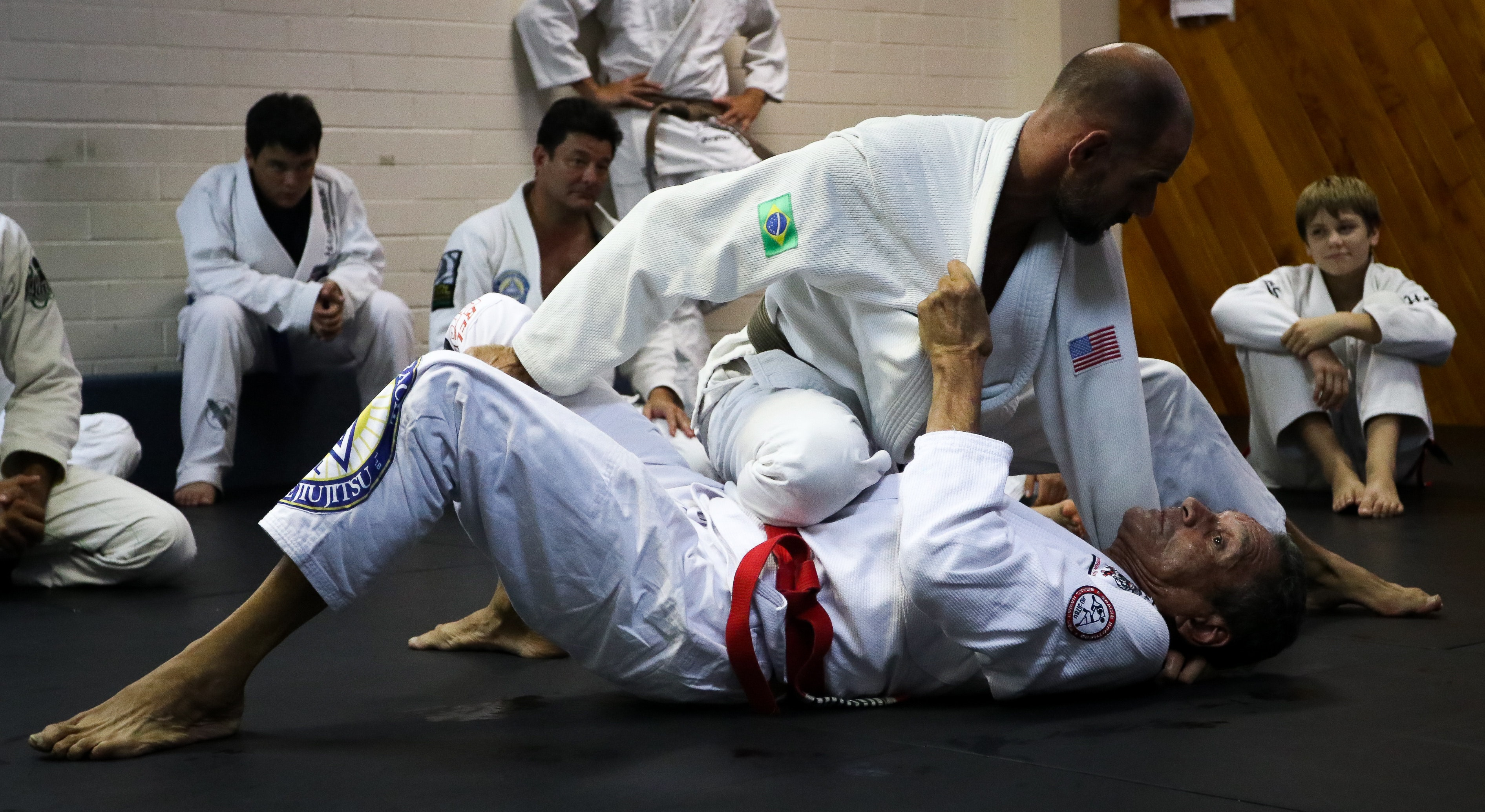 where to download bjj instructionals
