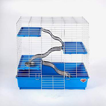 kaytee ferret home instructions