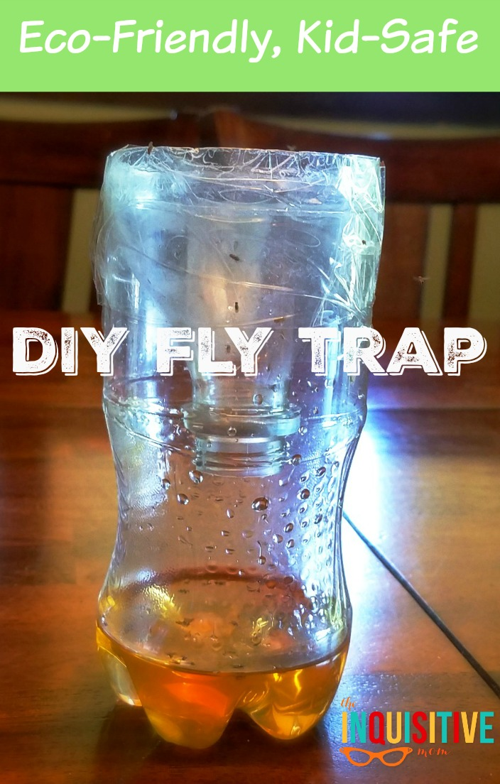 instructions for eco friendly fly catcher