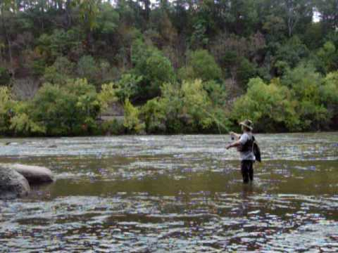 fly fishing instruction asheville nc