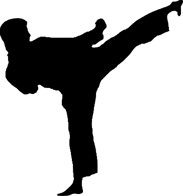 taekwondo white belt instructions