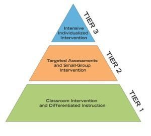 reading instruction for the primary gifted learner