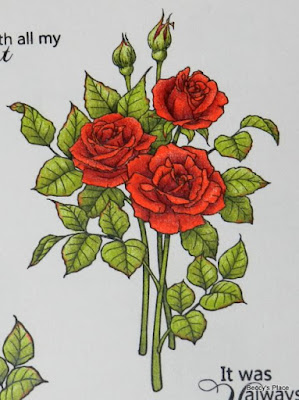 instructions on how to colour roses prismacolor pencils