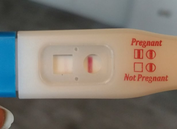 pregnancy test instructions walgreens
