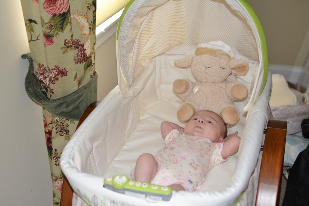 summer infant bentwood bassinet with motion instructions